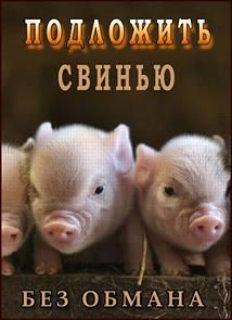 Постер к Без обмана. Подложить свинью (эфир от 19.01.2015)